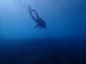 大久保浜に潜るダイバー