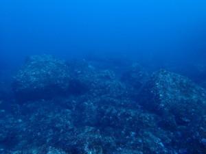 釜の尻海岸の海底地形