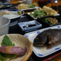 三宅島旅行-民宿の夕食で新鮮なお魚を堪能♪