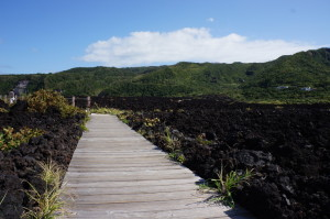 三宅島の溶岩遊歩道