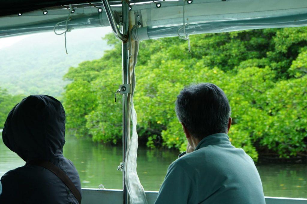 西表島の仲間川遊覧船からの眺め