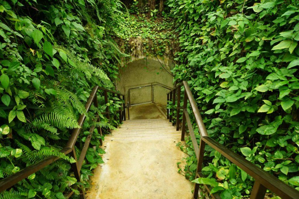 石垣島鍾乳洞へ降りる階段