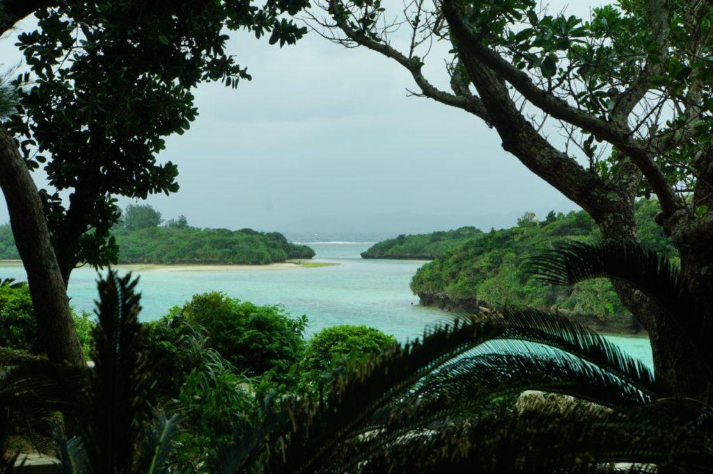 石垣島川平湾で木陰から見る海