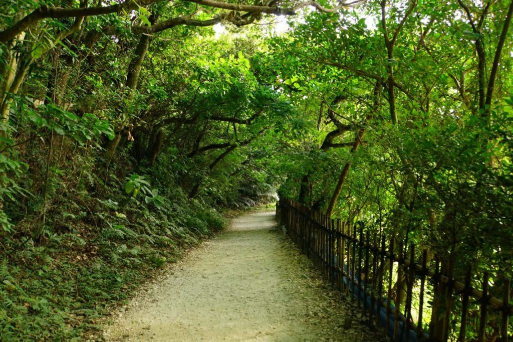 斎場御嶽の道