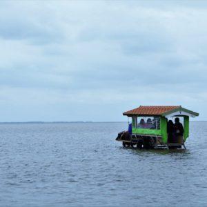 由布島の水牛とジワるオブジェ。シュールさ抜群の島