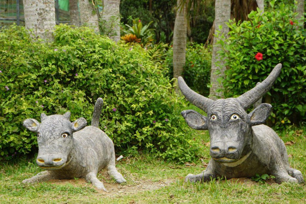 由布島の水牛像