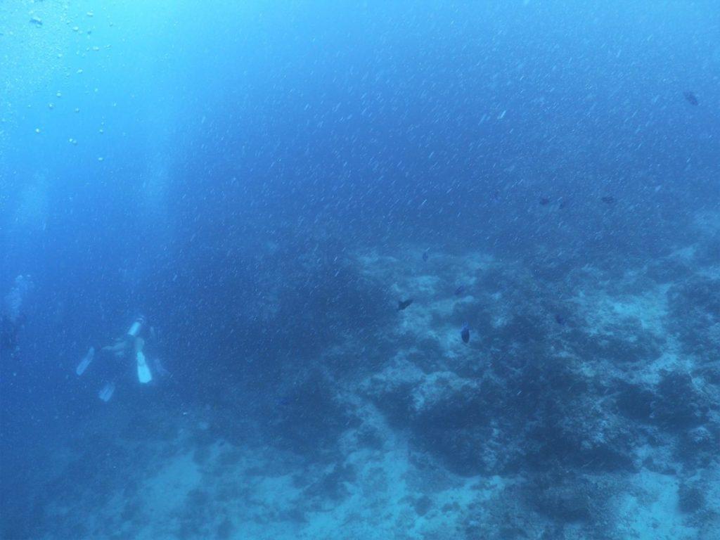 モルディブ南マーレ環礁のクダ・ギリにエントリー