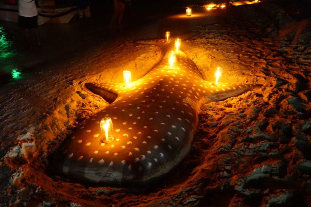 モルディブのアイランドサファリでロマンティックディナー会場となる無人島のビーチに作られたジンベエザメ