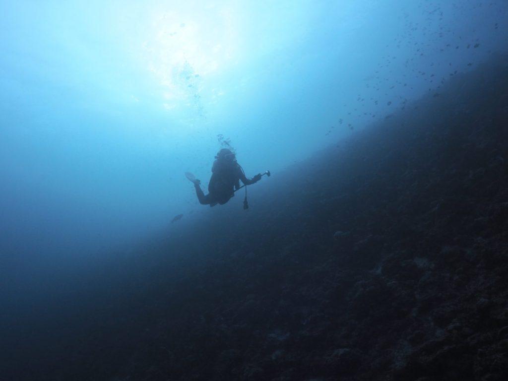 モルディブ・アリ環礁のランガリ・マディバルでドロップを進む