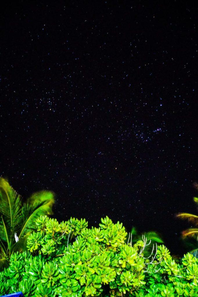 モルディブのアイランドサファリが立ち寄るが無人島で撮った星空とヤシの木
