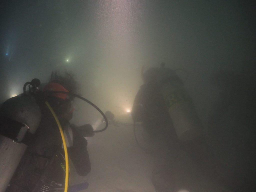 モルディブ・アリ環礁のフェスドゥ・ラグーンのナイトダイビング