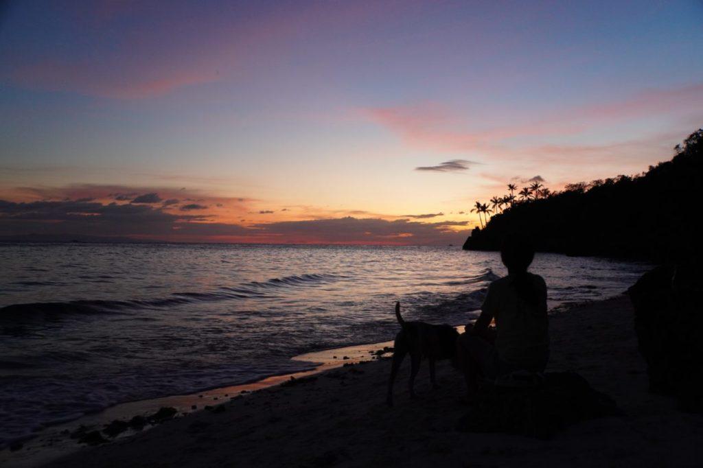 ノバビーチのビーチで犬と戯れながら見る夕焼け
